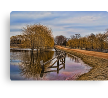 Willows in The Water Canvas Print