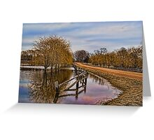 Willows in The Water Greeting Card