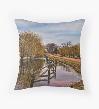 Willows in The Water Throw Pillow