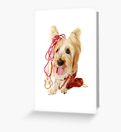 You said it was my scarf! Greeting Card