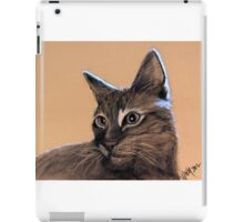 Big Kitten iPad Case/Skin