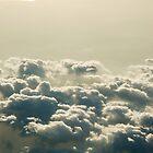 plane view july08(83) by Betsy Krooke