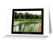 Pond #3 (Beaver Island State Park) Greeting Card
