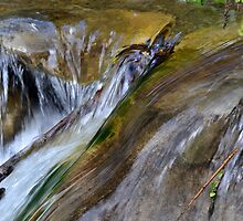 Burble - San Ysidro Falls Santa Barbara by Scott Switzer