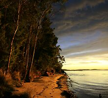 channel morning. d'entrecasteaux, tasmania by tim buckley | bodhiimages