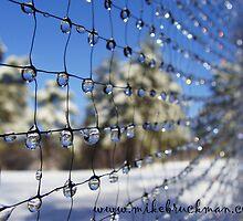 Crystal Day 2011 - The Net by GloKeys