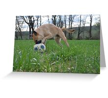 Doggy Dribble  Greeting Card
