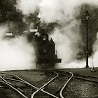 Puffing Billy by Timo Balk