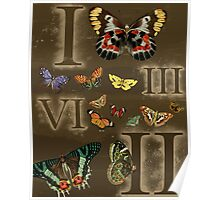 Let's Count Butterflies Poster