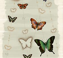 Butterfly Coordinates iii by petitestitches