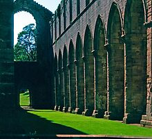 Fountains Abbey 7 by Priscilla Turner