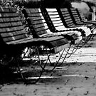 benches in row by waitin' for rain