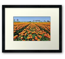 The same but different....... Framed Print