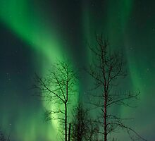 April 12th/11 Northern Light Show by peaceofthenorth
