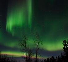 April 12th/11 Northern Light Show #2 by peaceofthenorth
