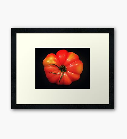 Beautiful Tomato Framed Print