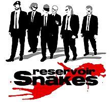 Reservoir Snakes Photographic Print