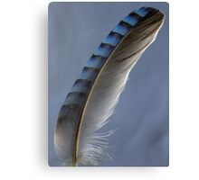 Feather magic Canvas Print