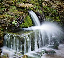 """""""The Crocodile"""", Compton Abdale, The Cotswolds, England by Giles Clare"""