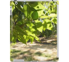 Selective focus on a young branch of a tree with leaves on blurred background iPad Case/Skin