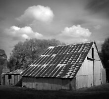 Renovator's Delight- Picadilly Valley Barn by Ben Loveday
