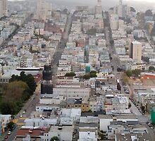 San Francisco rolling hills by Alex Eckermann