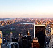 New York & Central Park by Alex Eckermann