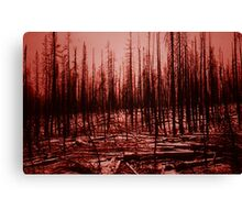 After the fire - Yellowstone Park 1990 Canvas Print