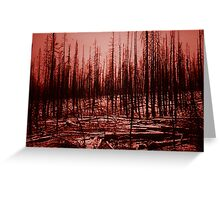 After the fire - Yellowstone Park 1990 Greeting Card