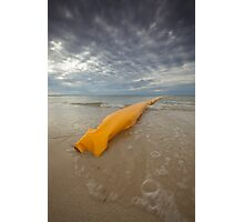 Stinger Protection - Busselton West Australia Photographic Print