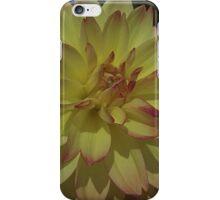 Tipsy iPhone Case/Skin