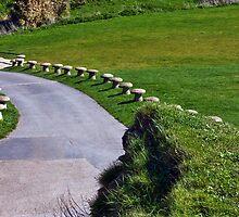 Follow Me To The Coastal Path by Susie Peek
