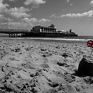 Bournemouth Pier in Black and White by Samantha Higgs