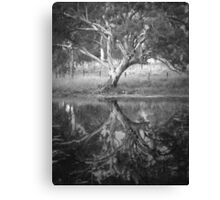 Scary Tree- Reflection in a Pond, Harrogate Canvas Print