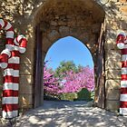 Decorated Gate at Obidos, Portugal by Steve