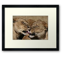 Can you touch your nose ? Framed Print