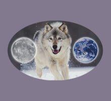 gray wolf by redboy