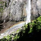 Comet Falls, Mount Rainier National Park by Timothy Alberry