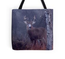 Buck - White-tailed Deer 3 Tote Bag