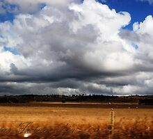 Leaving The Barossa by Cherie Vivar