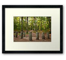 Site of Thoreau's Cabin Framed Print