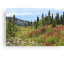 Scenic Alaska Canvas Print