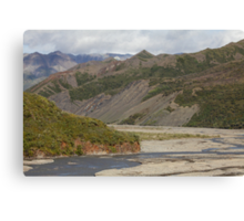 The Toklat River Canvas Print
