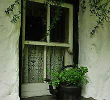 cottage window by Michelle McMahon