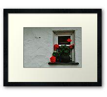 geranium window Framed Print