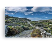the rocky road Canvas Print
