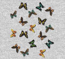 Butterflies Galore Kids Clothes