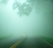 Driving through Fog by Leon Heyns