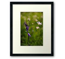 Woodland Flowers Framed Print