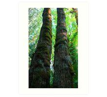 Two Trees Art Print